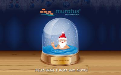 Feliz Natal e Bom Ano Novo!